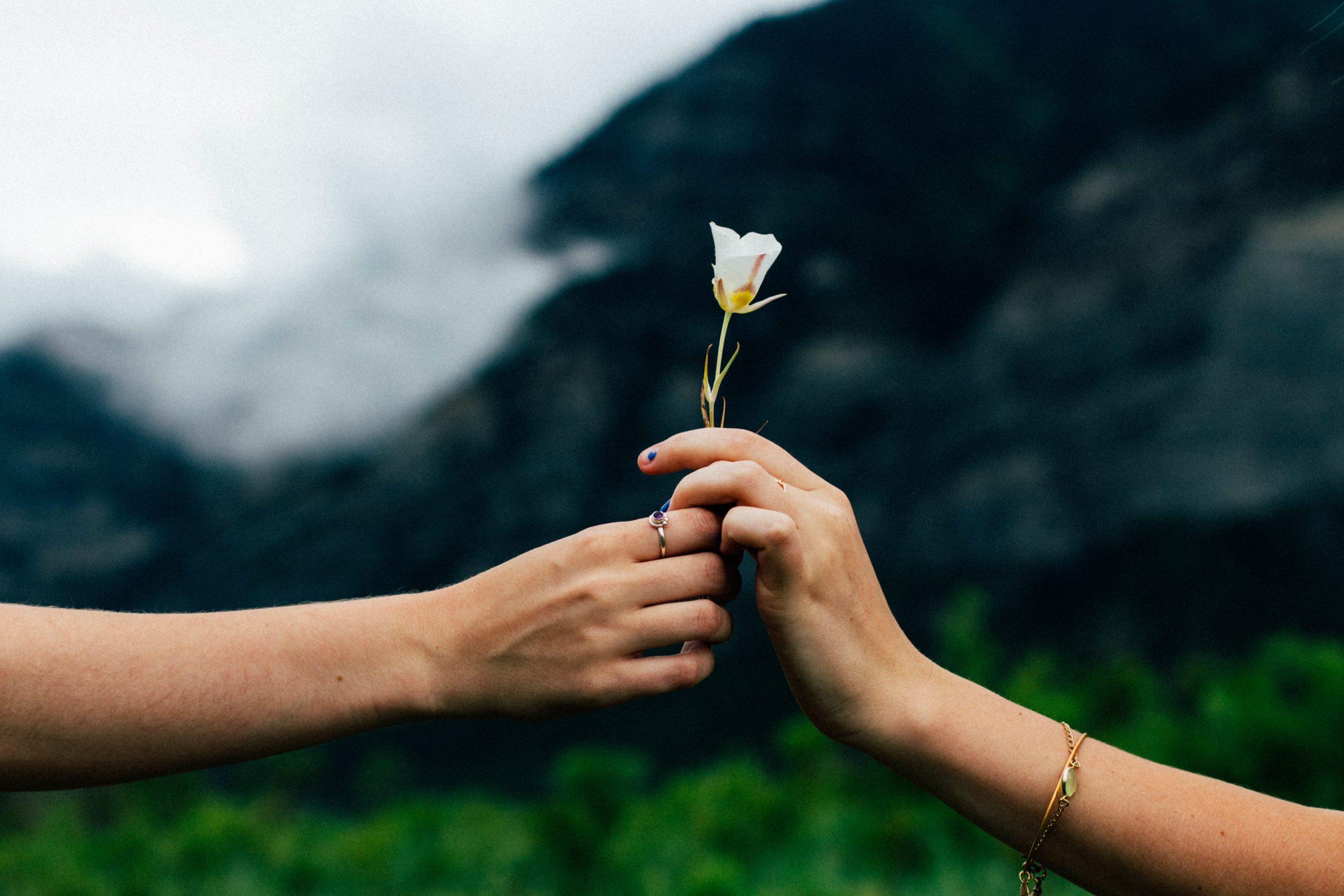 Was Liebe verändern kann