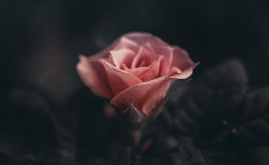 Geschenke der Dunkelheit & Mystik für Frauen ( + geführte Meditation)